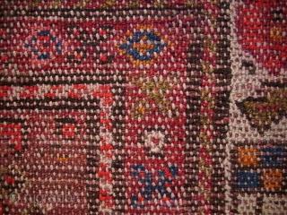 Hamadan, Kelly, um 1900, 302 x 150 cm