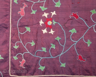 Central Asian Uzbek Nim Suzani , not without condition problems but an elegant one.
