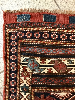 Shahsavan bagface with fantastic colors size