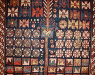 Rare Shahsavan rug with great natural Colors and unusual design, 19th century, 189x121cm