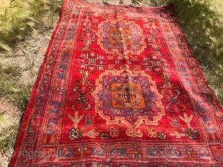 Сarpet Uyghur: Hotan or Kashgar, the pile is well preserved, 1930-40, 230 Х 120.