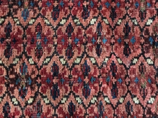 Small dated Kuba Seichur rare Design field and border size 90 cm x 70 cm original ends and sides Blue 4 ply selvedge field moth damage good drawing and color