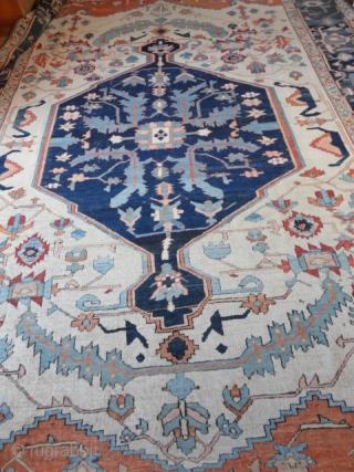 Magnificent  antique  Serapi , Nord-West  Persien  19  th. century  320 X 417  cm.  Fantastique , amasing  colours , quality  wool , fine  weave  ...
