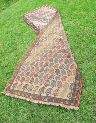 351-Boteh Shirvan runner. XIXth C. White/ivory ground. 100% wool. All natural colors. Needs repairs. 33 x 105 inches.