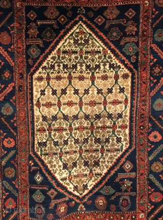 Kolyai Shirshekeri Kurd Rug.  Circa Antique.  Lattice field design.  Very good condition.  8 colors.  75 x 50.  Clean and hand washed.