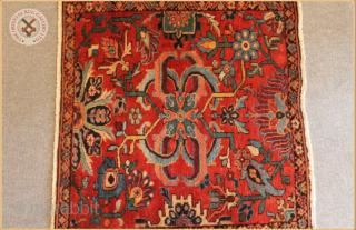 "TR 1180 -  Antique Ziegler rug circa 1890 wool on cotton foundation Very good condition Size : 1.00m x 1.09m  3`3"" x 3`7"""
