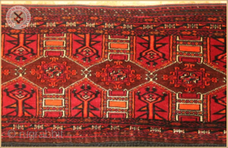 RG1151-