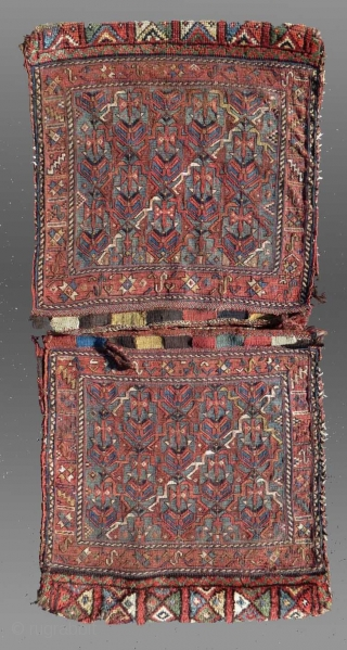 Baktiari Saddle Bag, W. Persia, 19th C.