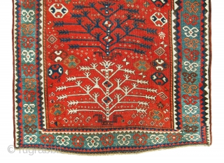 Extraordinary, master piece tree of life south west Kazak caucasian rug in great shape, color combination, age and design. It was made with wool on wool foundation with bothe ends and selvages  ...