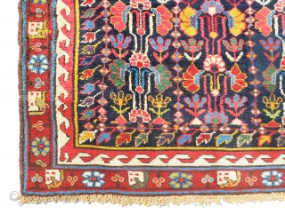 Super beautiful antique Saubulagh fragment? in full pile and extremely gorgeous colors. All colors are natural including very old aubergine color. Selvages are original but both ends have been received superb quality  ...