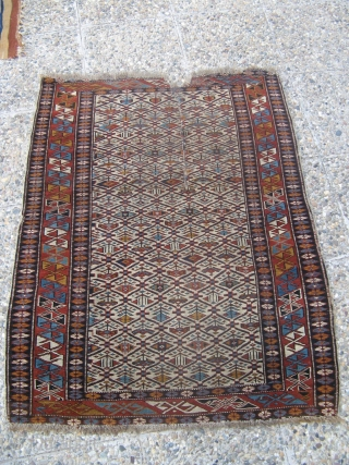 Antique Shirvan rug.