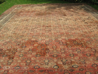 Late 19th c Agra Carpet,large sized carpet, Hand woven