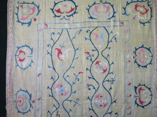 "Sherisabz rural suzani with innocent / naive drawing. Silk emrboidery on adras ikat. Fine palin cotton backing added later on. Saturated good colors. stylized blossoming pomogranates. 19th century - size : 60""  ..."