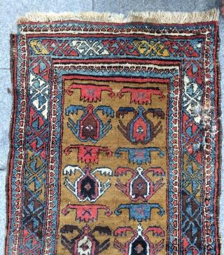 Shahsevan Kurdish rug size 264x87cm