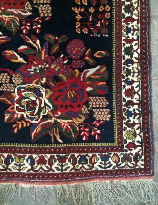 Avsar all are colors natural full conditions and very fine size 145x125cm
