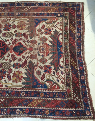 Shiraz size 245x170cmm