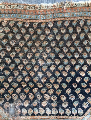 Qashgai horse saddle cover