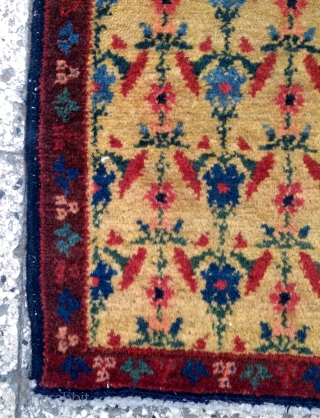 Sine Kurdish Carpet 