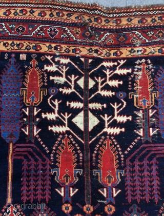 Persian Kurdish Garden Carpet, 19th Century 156x 250 cm.