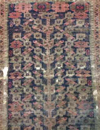 Tree of life Beluch pile very low size 160x86cm