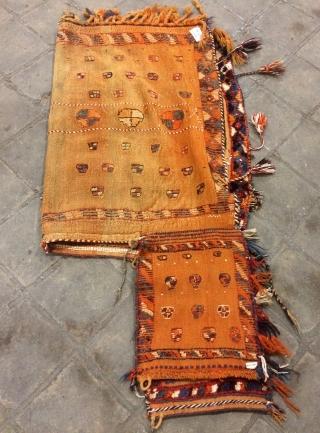 Qhasgai horse cover size 150x105cmm
