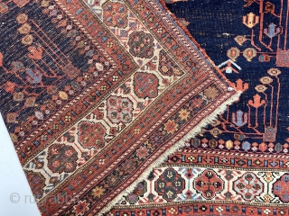 Antique Afshar rug with first rate color and bold eye catching drawing. The weaver paid great attention to the beautifully colored borders, even adding extra border panels at top and bottom. All  ...