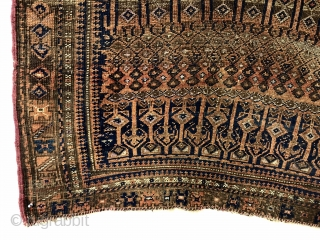 Antique Baluch rug with an interesting and probably unique design. The weaver went beyond free drawing to uber free drawing with three pieces completely different field designs on one rug. One could  ...