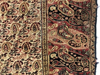 Antique small Persian rug with an appealing mother and daughter boteh border and an intricate ivory ground boteh lattice field. Unfortunately in rough condition with very low pile and much wear. Edges  ...