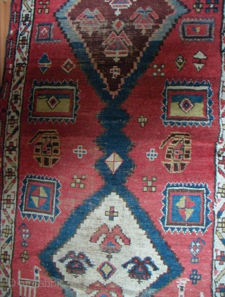 Shashavan,c.1860, West Persia,Kurdish Tribe. 293x92 cm. This is not a runner,but  one of the traditional formats of ancient Persian Nomad-rugs.