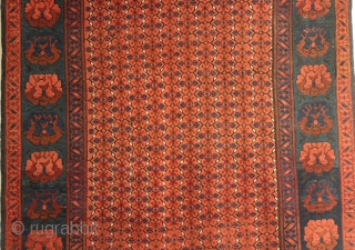 Antique Caucasian Carpet . Wool on wool . 177x110 CM. 1890S years old.