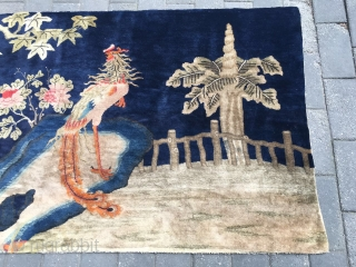 """#1721 Baotou rug, It was produced in Baotou area in Inner Mongolia, The rug name"""" red phoenix in morning sun"""", blue background with lively phienix, very good quality, complete one no any  ..."""