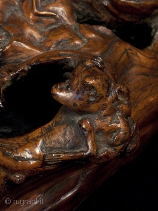"""Burl okimono, Japan. Burl wood, paint. 9"""" (23 cm) wide. Meiji Period. This fascinating burl figure is full of whimsical animals: monkeys, alligator, frog and maybe a squirrel. Dots of black paint highlight the eyes of the  ..."""