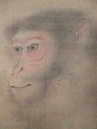 Japanese Scroll Painting of a Monkey Antique Japanese scroll painting of a monkey seated near a blossoming peony. Painted with great expression and much attention to the details of the face, hands and  ...