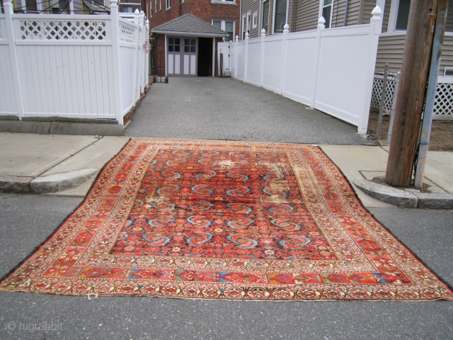 """huge antique mahal rug 10' 4"""" x 13' 4"""" super rare design solid rug no dry rot clean area or wear and couple of holes as shown beautiful natural colors. SOLDDDDDDDDDDDDDDDDDDDDDDDDDDDDDD"""