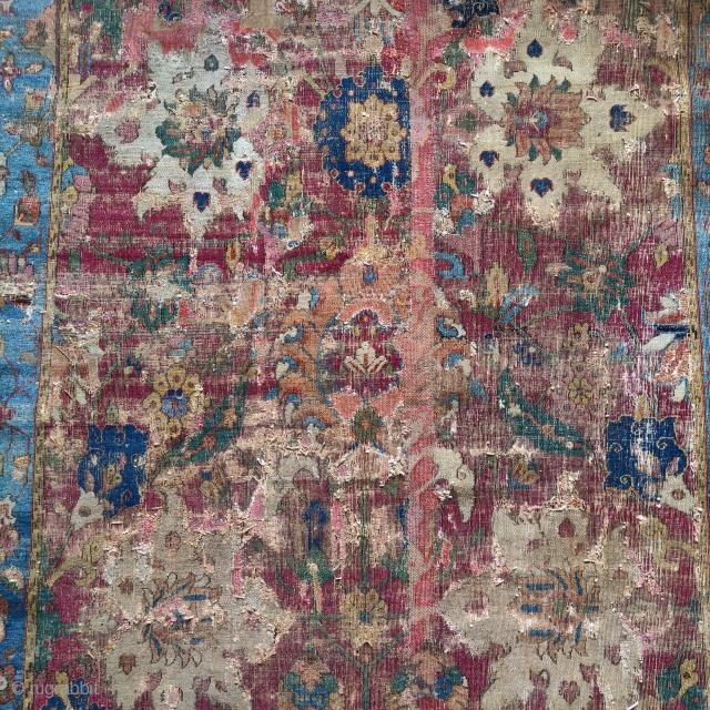 Detail from an early (Jufti knotted type) Herat / Khorasan carpet. Safavid era, circa 1600.