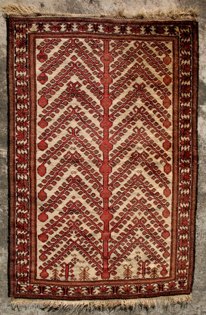 A Pomegranate Tree-of-Life prayer rug from East Turkestan - Uyghur. 1900. Excellent condition. 53 x 34 inches.