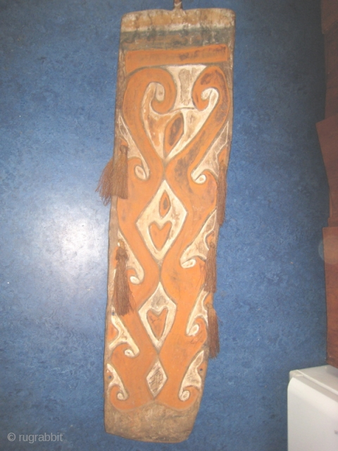 Wooden shield from Irian Jaya, West Papua.  16 inches wide by 61 inches tall.  Relief design highlighted with white and dark brown.  Tassles on side.