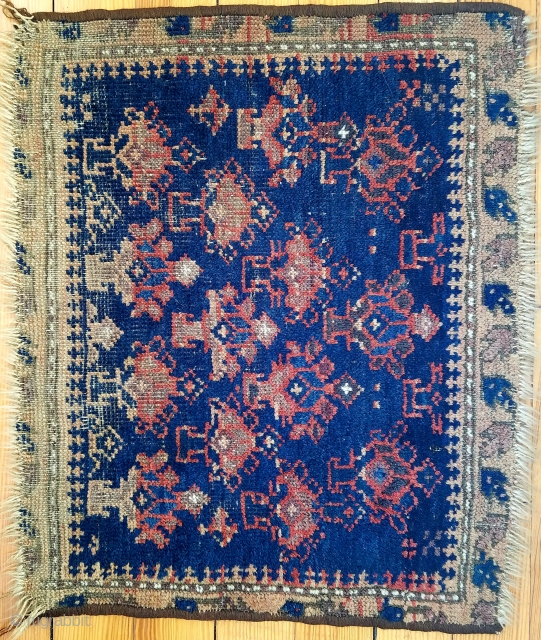 """Baluch about 22"""" x 25""""fragment  with nice shrub design. As found.  $105 usd + ship"""