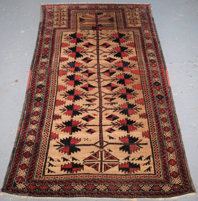 Antique Afghan Baluch camel ground prayer rug with tree of life, Circa 1900. Size: 4ft 11in x 2ft 9in (149x 84cm). www.knightsantiques.co.uk