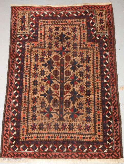 Antique Baluch camel ground prayer rug with tree of life on a camel ground, Northern Afghanistan.