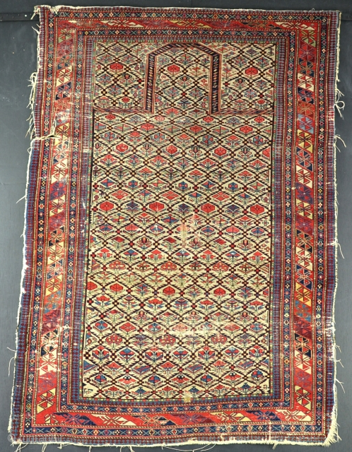 An exceptionally fine Shirvan prayer rug, woven on silk wefts. a little wear, s tear to left border, tatty around edges, one or two small faded repairs, needs a good wash. The  ...