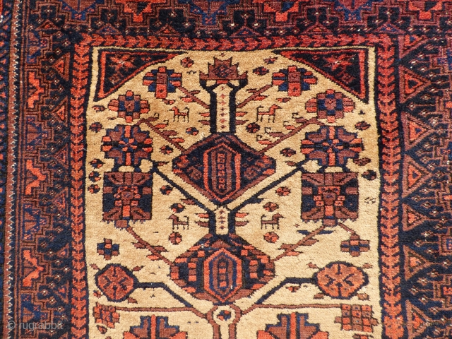 Baluch Tree of Life Rug - Sheep wool and natural camel hair on wool foundation