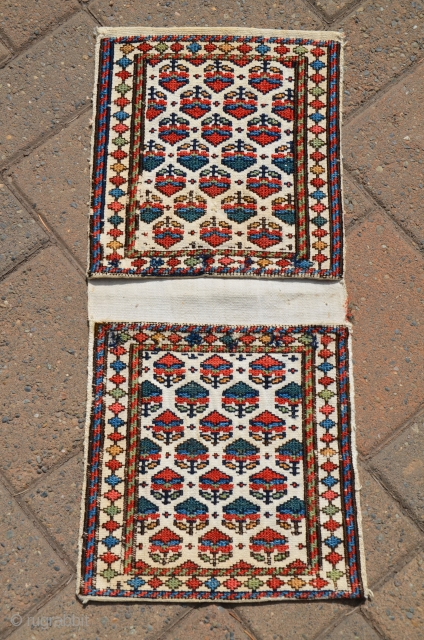 "Antique Shahsavan flat woven mini-khorjin. 11"" X 24"" Circa 1900. Soumac bud and flower designs on cotton ground. All natural colors. In fine original condition."
