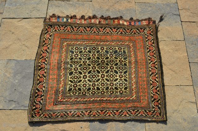 "A wonderful Northwest Persian bagface, great color, with an incredible green.  This measures 27"" x 30"""
