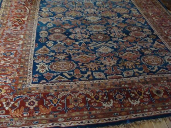 Antique Ziegler and Co carpet 3.95 m x 3.10m in excellent unrestored condition.