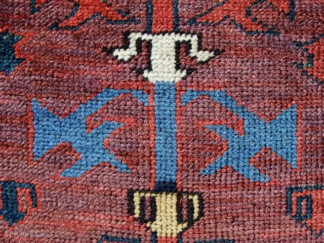 more, so much more at www.jamescohencarpets.com   Why not subscribe to updates...?