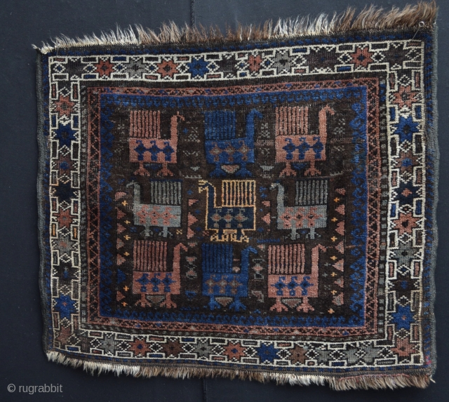 Fabulous Old Baluch Bird bagface with colorful design