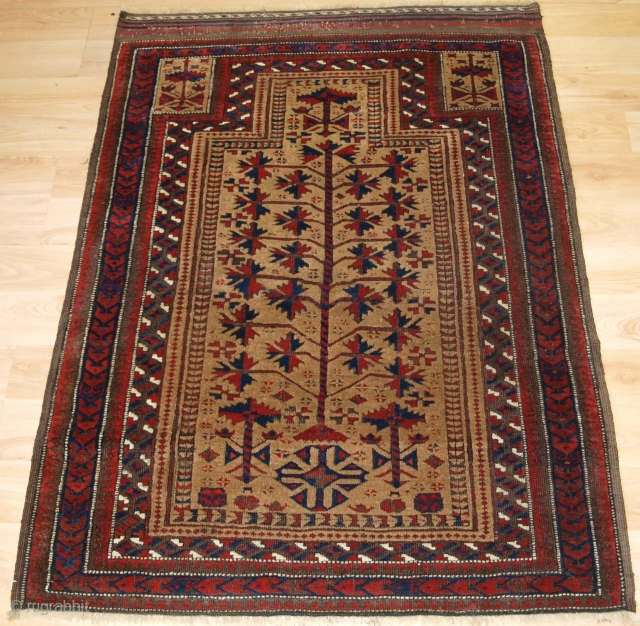 Antique Baluch camel ground prayer rug a design that is typical of the Sarakhs Baluch of Khorasan.   Late 19th century.  Size: 3ft 10in x 2ft 10in (117 x 86cm).  The rug is beautifully drawn  ...
