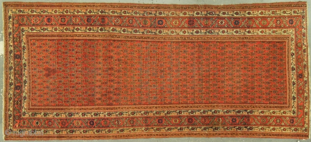 Persian Malayer Saraband, c. 1920. 4½ x 9½ ft (140 x 290 cm), some fraying at end.