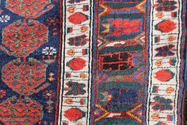 High quality rug NV Persia late 19th c. 203x147. Intense dyes and the best Kurdish wool, just a little corrosion and selvedge over binding.